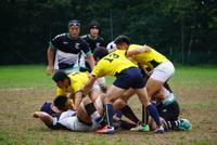 東京大学戦