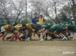 成城大学戦